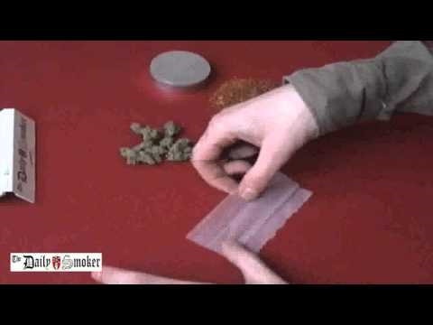 Daily Smoker- roll a joint - Octopus