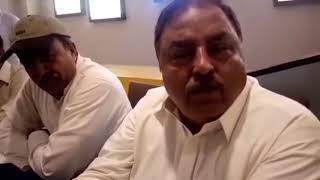 Pigeons... Punjab cup 2