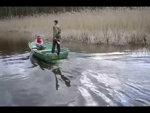 HASWING Osapian 55/60Lbs MAX Mc-Tuning GOGLIN