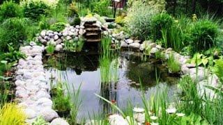 Садовый руд для разведения рыбы(Пруд для разведения рыбы. Вы хотите создать на приусадебном участке пруд с растениями, в котором наряду..., 2014-08-09T14:28:22.000Z)