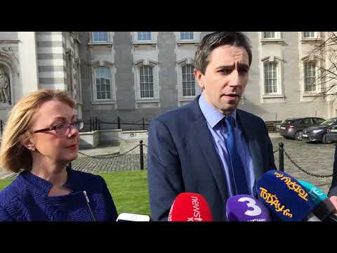 Health Minister Simon Harris responds to Supreme Court ruling
