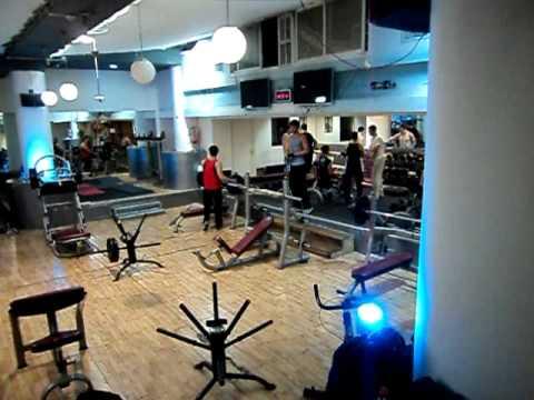 The Giraffe Gym in Jerusalem
