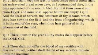 Exodus - King James Bible, Old Testament (Audio Book)