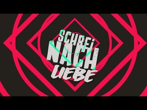 SCHREI NACH LIEBE  - HARRIS & FORD (Die Ärzte Cover-Remix) mp3