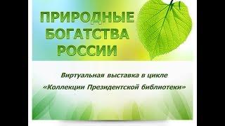 Природные богатства России. Виртуальная выставка в цикле «Коллекции Президентской библиотеки»