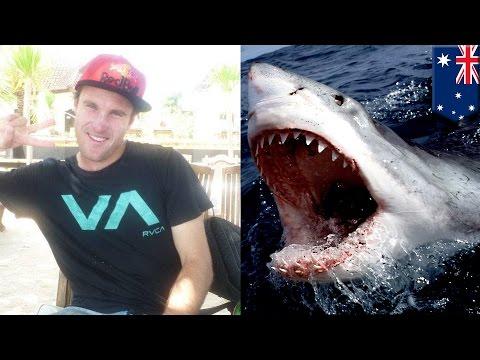 Shark Attack! Man loses both arms in vicious shark attack in Australia