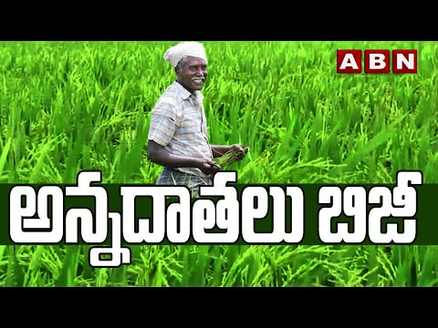 Special Story On Farming In SangaReddy District   ABN Exclusive teluguvoice