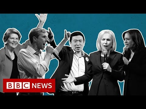 Democratic debate: 2020 candidates' divisions laid bare in feisty TV debate - BBC News