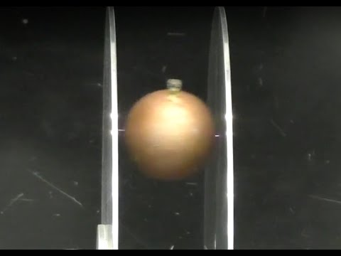 Capacitor Charge Demo: Oscillating Ball