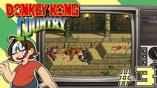 Donkey Kong Country - FUND DAD - Episode 3 - Joe-Joe Has Fun