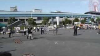 シルバープードルスミレが2009年東京北連合会にてグループ戦まで進...