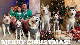 OUR BEST CHRISTMAS EVER!!  [READ DESCRIPTION]