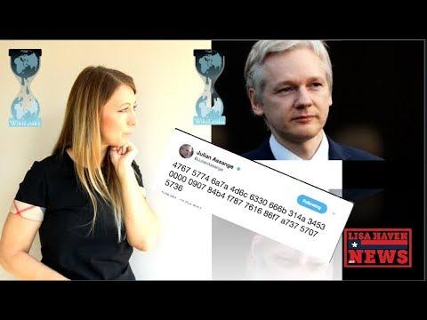 Download Youtube: Wikileaks Julian Assange Sends Ominous Tweet… What Does It Mean? A New Leak?