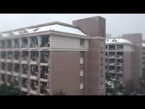 Winter in Zhejiang University (Zijingang campus)