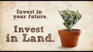 3 Types of Vacant Land Real Estate Investing and Tools to Help Investors
