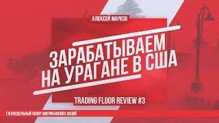 Trading Floor Review 11/09/17 Зарабатываем на урагане в США
