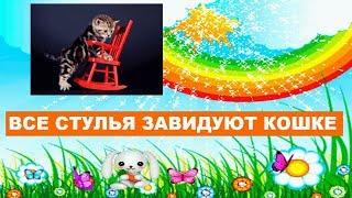 Смешная песенка для детей - Все стулья завидуют кошке