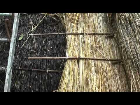 Iron Age Roundhouse Thatching