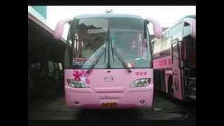 2009 Top 13 Bus Companies in Northern Luzon
