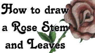 How to draw a Rose Stem