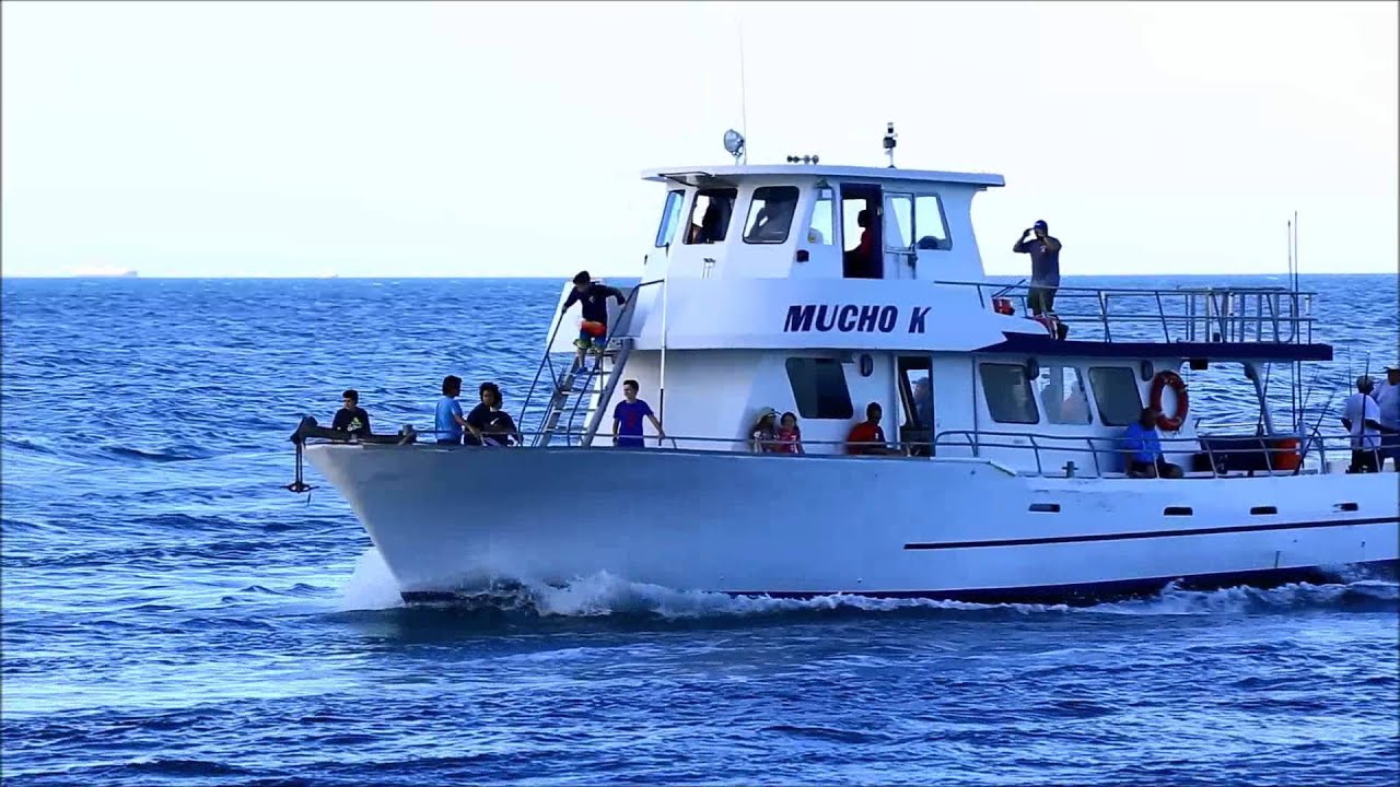 Mucho k party fishing boat at haulover youtube for Party boat fishing