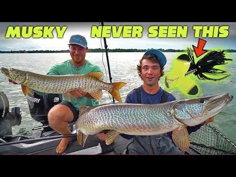 41 MUSKY BITES!?! - Lake St. Clair CRAZINESS Part 1