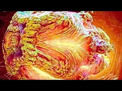 АННИГИЛЯЦИЯ | Трейлер #2 русский (субтитры) | Фильм 2018