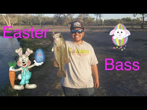 Catching Some Easter Bass!
