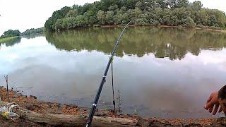 Рибалка р. Протоки! Буффало або Карась,що я ловлю?
