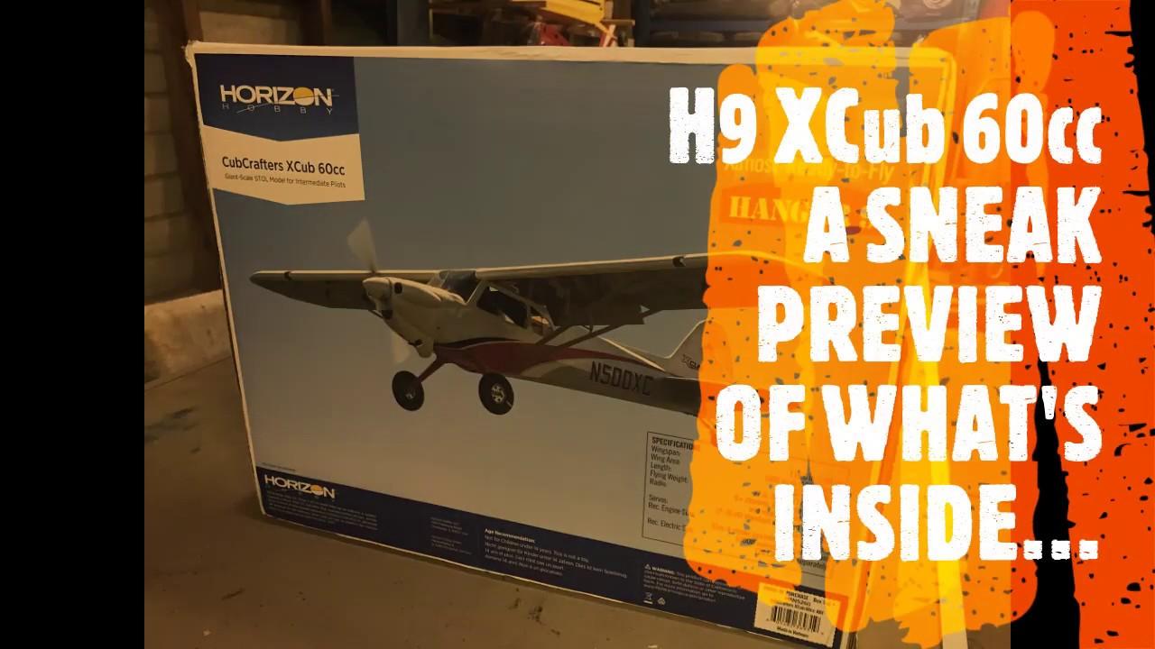 CubCrafters XCub 60cc ARF (HAN5260) - Page 21 - FlyingGiants