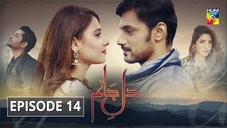 Dil e Jaanam Episode 14 HUM TV Drama