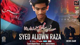 Syed Aliown Raza | Marnay Sy Mujhay Pehlay Zawwar Banana | Noha | 2019