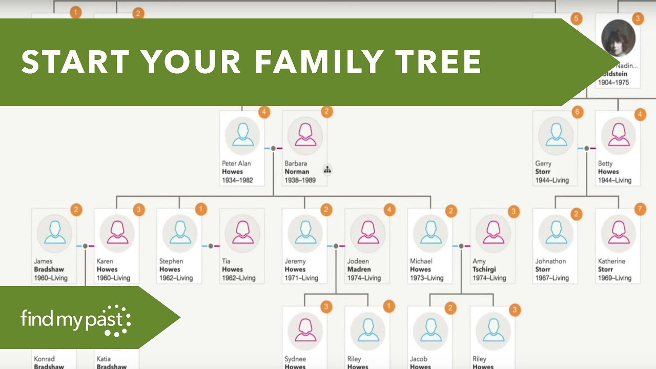 It's just a picture of Astounding Family Tree Image