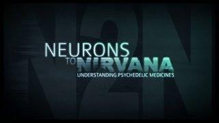 От нейронов к нирване. Медицинское применение психоделиков (2013) [Lord32x]