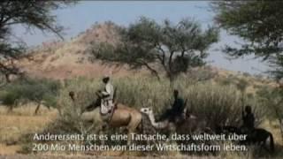 Elevage Mobile im Niger