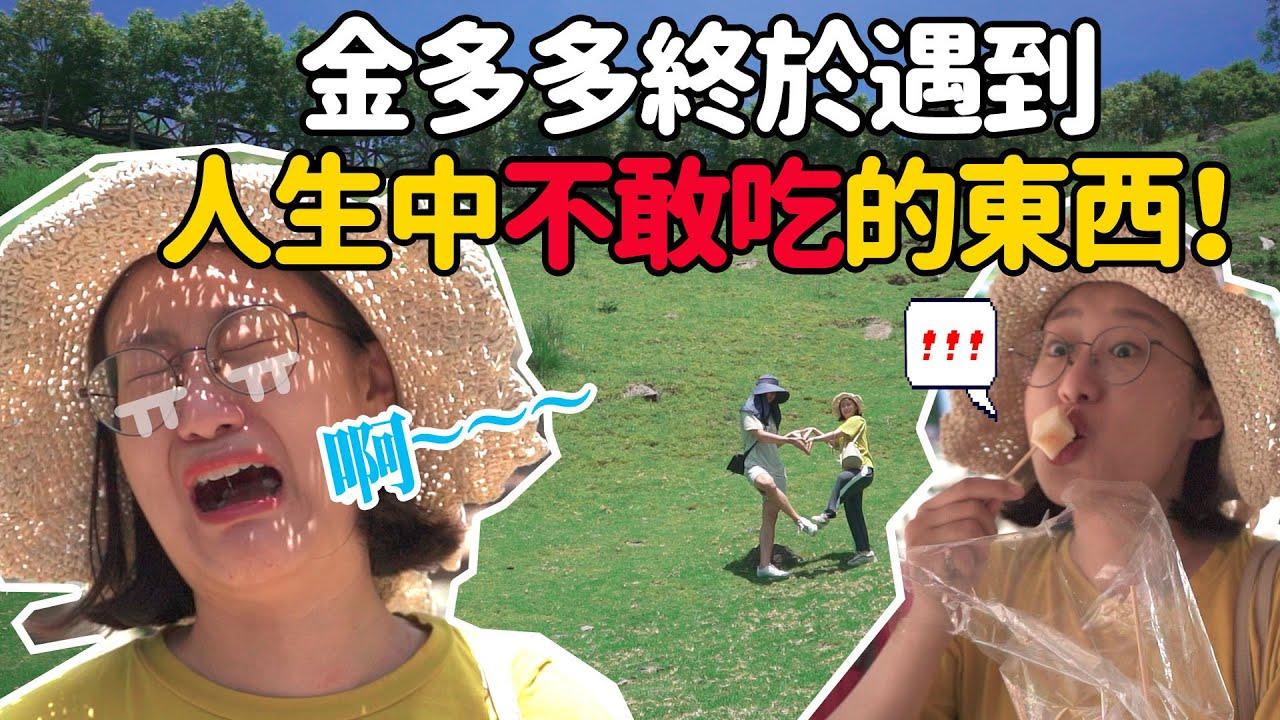 〔清境農場〕韓國人試吃臺灣高山水果😋金多多終於在農場遇到人生中不敢吃的東西😫대만 칭찡농장 후기l金多多Dada Kim