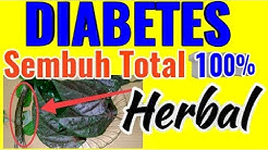 hqdefault - Obat Diabetes Metrix