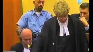 Steven Kay QC: ICTY, Cross examination of Expert Witness, The Prosecutor v Gotovina et al  2009