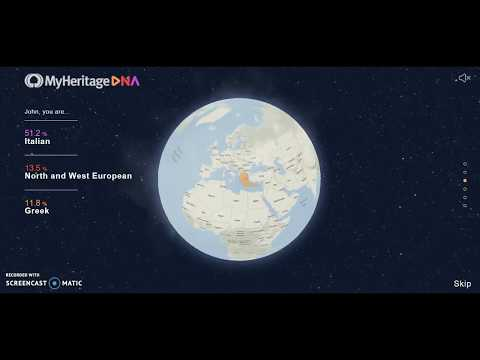MyHeritage DNA Results Globe Review. Italian American.