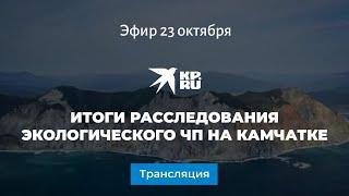 Что случилось на Камчатке? Итоги расследования экологического ЧП