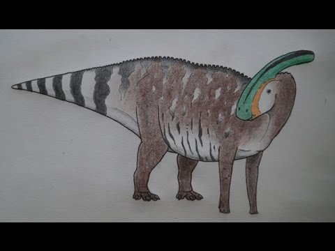 How to draw an accurate Parasaurolophus