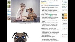 @Bahamas 70% OFF Amazon Discount, Promo, Coupon Code PUPMATE Natural Flea,Tick Collar for Dogs, Cats