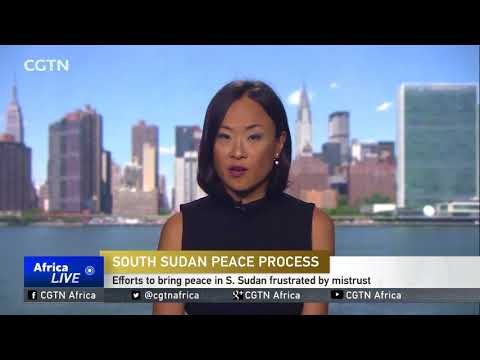 UN official calls on UNSC to push for dialogue in South Sudan