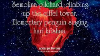 I Am The Walrus - Bono and Secret Machines {Lyrics}