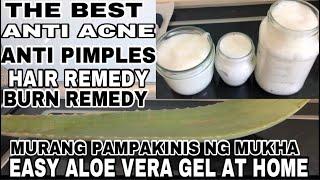 Paano Gumawa Ng Aloe Vera Gel|Murang Pampakinis ng Mukha|Easy Fresh Aloe vera Gel|Pimples Acne Hair