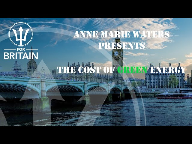 Anne Marie Presents: The Cost of Green Energy