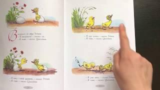 Цыпленок и утенок. Сказки и картинки Сутеева