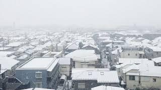 PIZZICATO ONE - 東京の街に雪が降る日、ふたりの恋は終わった。 feat. ミズノマリ