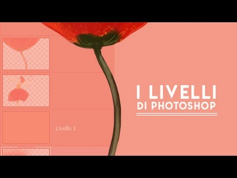 Adobe FLASH Tutorials - YouTube