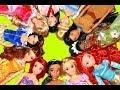 Disney Princess Doll Collection 12